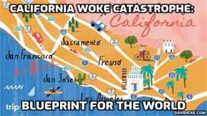 California WOKE Catastrophe