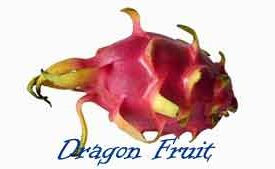 Dragon Fruit: The Little Known Benefits of This Delicious Treat